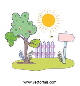 cute arrow guide wooden with fence scene