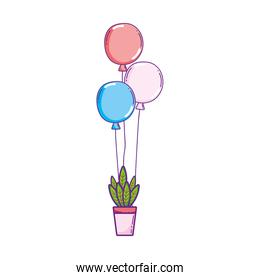 party balloons helium with houseplant