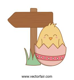 little chick with egg broken and arrow guide easter character