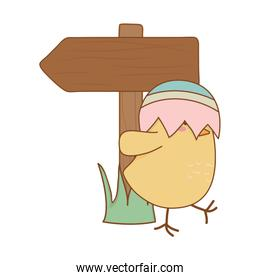 little chick with egg broken hat and arrow guide easter character