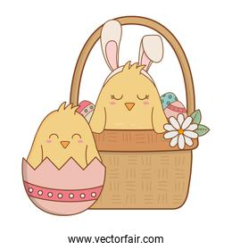 little chicks in basket easter characters