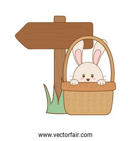 little rabbit in basket with arrow guide easter character