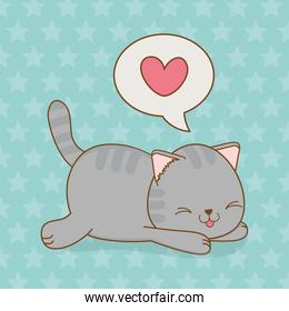 cute little cat with heart in speech bubble kawaii character