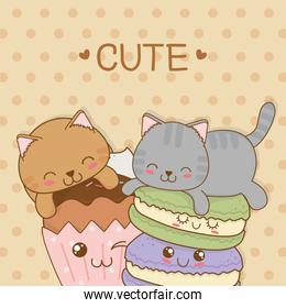 cute little cats with sweet donuts kawaii characters