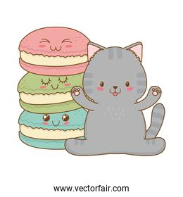cute little cat with cookies kawaii character