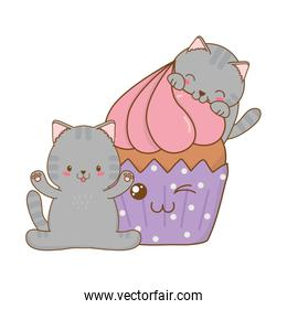 cute little cats with cupcake kawaii characters