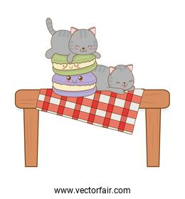 cute little cats with cookies kawaii characters