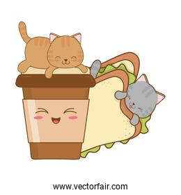 cute little cats with sandwich kawaii characters