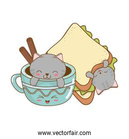 cute little cats with chocolate mug kawaii characters