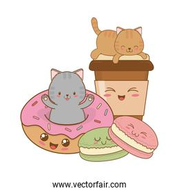 cute little cats with donuts kawaii characters