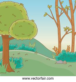Forest with trees design vector illustration