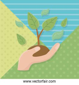 Hand holding plant with leaves design