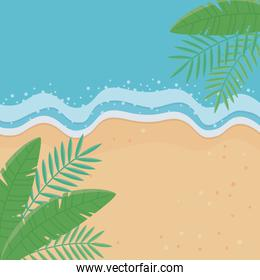 Palm tree leaves of summer background