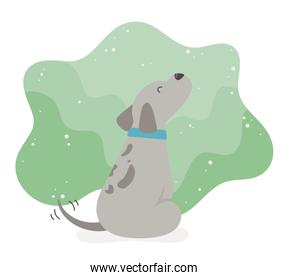 cute little dog mascot icon isolated