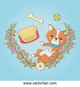cute little dog mascot with bed and bone