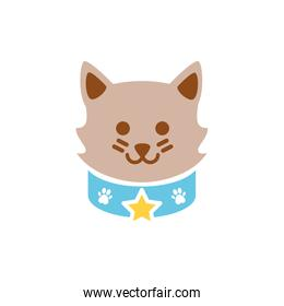 Isolated cat icon flat vector design