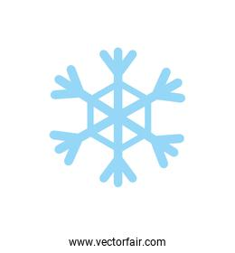 Isolated snowflake icon flat vector design