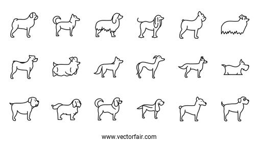 set of dogs breed standing icons linear style