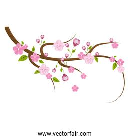 cute flowers branches decoration
