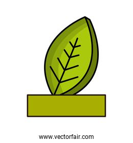 natural leaf with ribbon icon