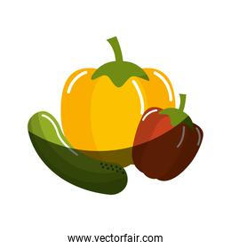 cucumber, yellow pepper and red pepper vegetable icon