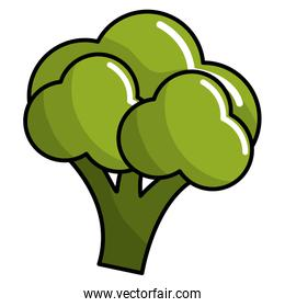 healthy broccoli vegetable icon