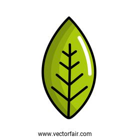 green leaf environment care icon