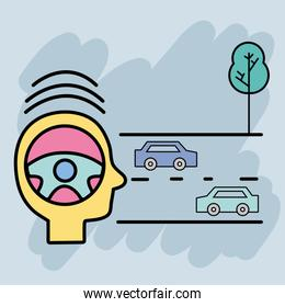 cars on the street and tree to learning drive
