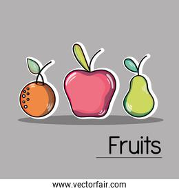 set delicious and fresh tropical fruits