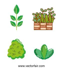 Set of garden and nature pixelated icons