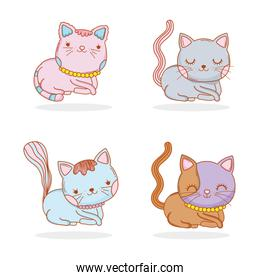 set cute cat animal with whiskers