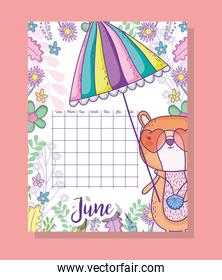 june calendar information with squirrel and plants