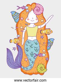 cute mermaid woman with shells and fishes