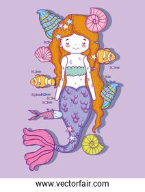 cute mermaid woman with shells and snails