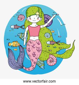 mermaid woman with fishes and shells underwater