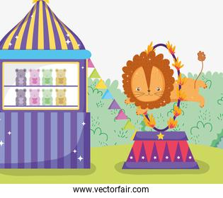 toys store and lion jumping the fire hoop