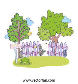 spring and exotic trees with wood grillage