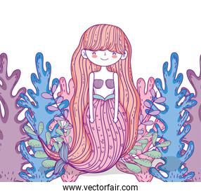 mermaid woman with hairstyle and seaweed plants