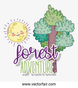 forest adventure with nature tree and sun