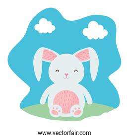 cute rabbit character in the field