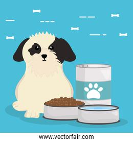 cute little dog with food
