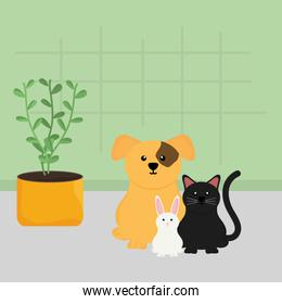 group of mascots with house plant