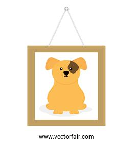 cute little dog in picture hanging
