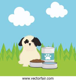 cute little dog with food in the field