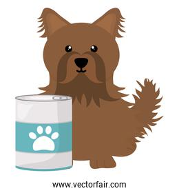 brown  little dog with can food character