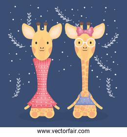 cute couple giraffes with clothes characters