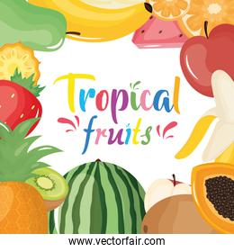 group of tropical and fresh fruits frame