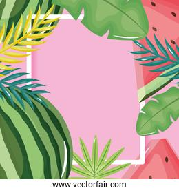 fresh watermelon and leafs palms square frame