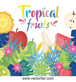 tropical fruits and leaves palms frame