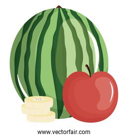 fresh watermelon and apple fruits